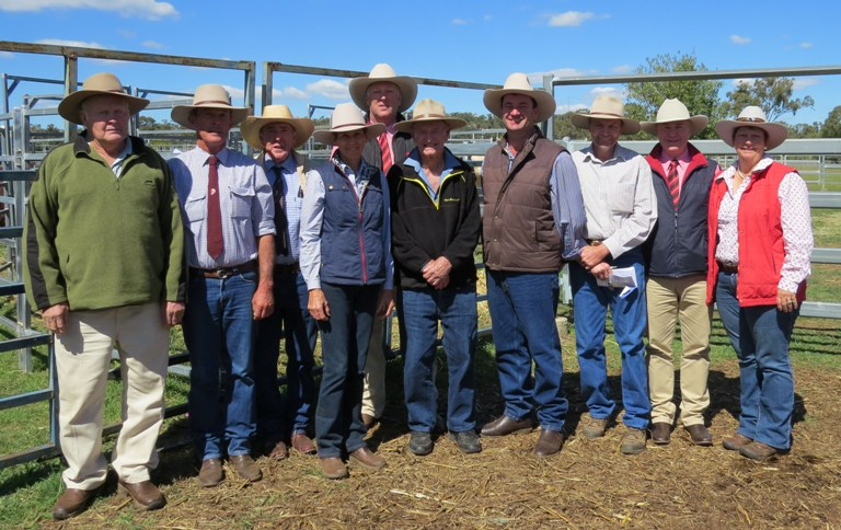 Success at 12th Annual New Dimension Braford Sale